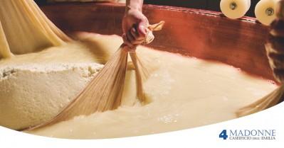 Come si fa il Parmigiano Reggiano?