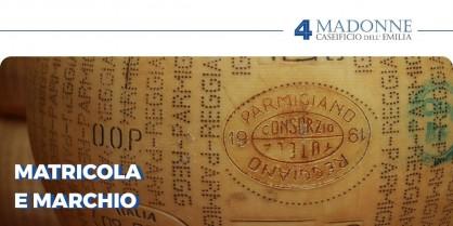Matricola e Marchio del Parmigiano Reggiano: ecco cosa significano