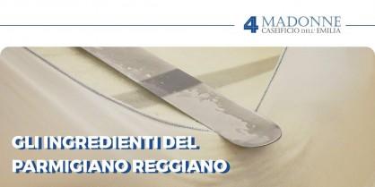 Ingredienti del Parmigiano Reggiano: ecco quali sono realmente