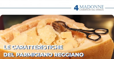Quali sono le caratteristiche del Parmigiano Reggiano?